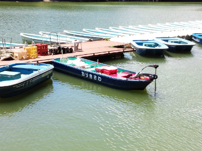 2014.8.19亀山湖 バス釣り 白鳥島