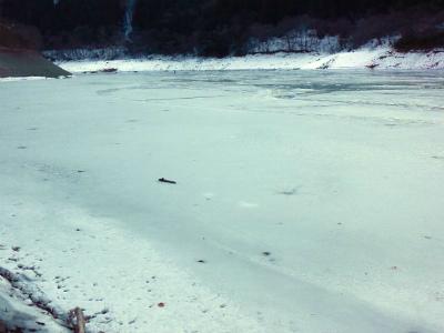 2013.01.30奥多摩湖 スモールマウスバス ビッグスモール